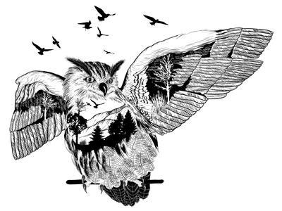 Double Exposure - Owl