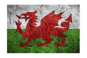Flag Of Wales by Miro Novak