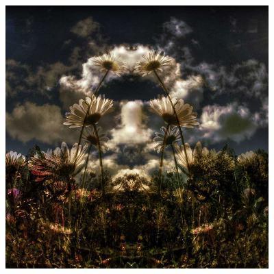 Miror floral I-Jean-Fran?ois Dupuis-Art Print
