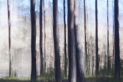 https://imgc.artprintimages.com/img/print/mirror-of-light_u-l-q1gvwdw0.jpg?p=0