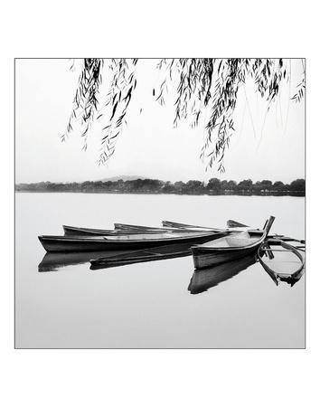 https://imgc.artprintimages.com/img/print/mirrored-water_u-l-f8d0320.jpg?p=0