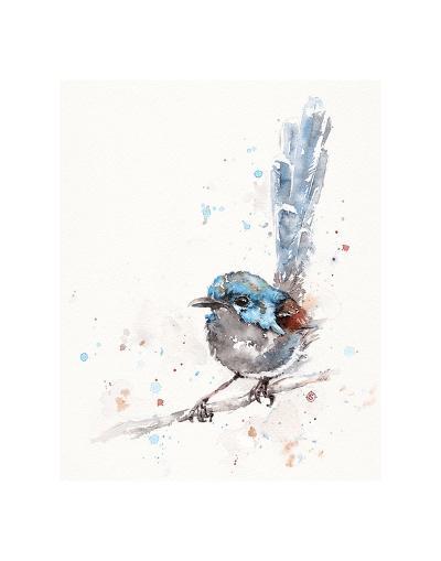 Mischief in the Making (Variegated Fairy Wren)-Sillier than Sally-Art Print