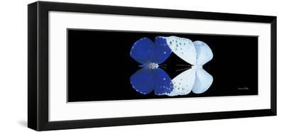 Miss Butterfly Duo Catoploea Pan - X-Ray Black Edition-Philippe Hugonnard-Framed Photographic Print