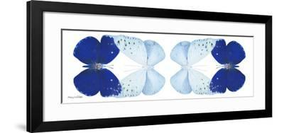 Miss Butterfly Duo Catoploea Pan - X-Ray White Edition II-Philippe Hugonnard-Framed Photographic Print