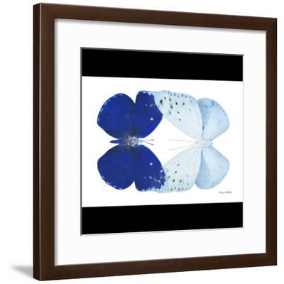 Miss Butterfly Duo Catoploea Sq - X-Ray B&W Edition-Philippe Hugonnard-Framed Photographic Print
