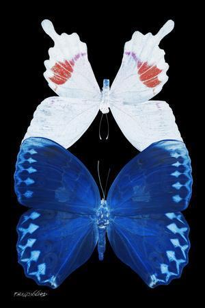 https://imgc.artprintimages.com/img/print/miss-butterfly-duo-formohermos-ii-x-ray-black-edition_u-l-q19nby30.jpg?p=0
