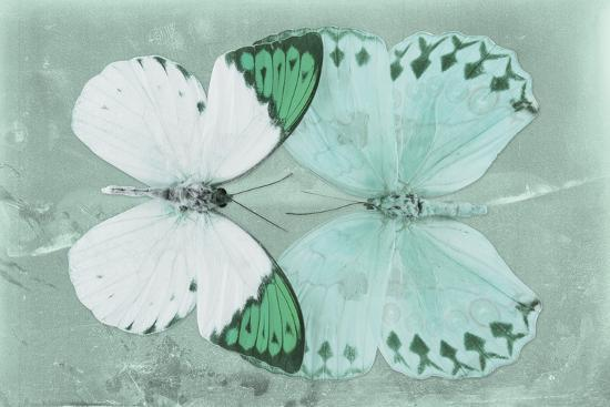 Miss Butterfly Duo Formoia - Coral Green-Philippe Hugonnard-Photographic Print