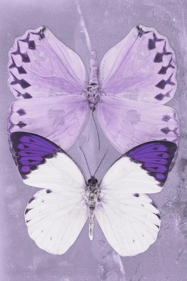 Miss Butterfly Duo Formoia II - Mauve-Philippe Hugonnard-Photographic Print