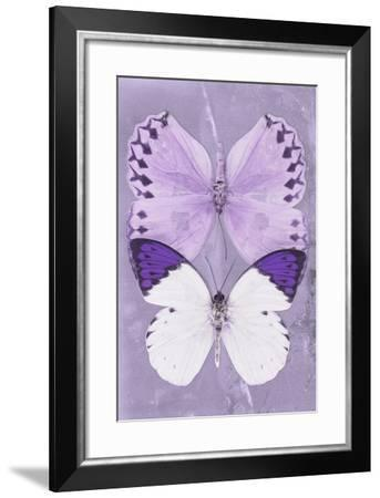 Miss Butterfly Duo Formoia II - Mauve-Philippe Hugonnard-Framed Photographic Print
