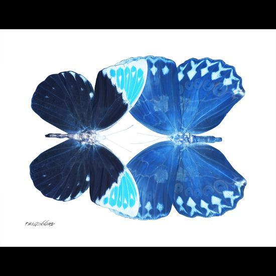 Miss Butterfly Duo Formoia Sq - X-Ray B&W Edition-Philippe Hugonnard-Photographic Print