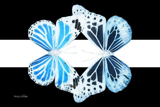 Miss Butterfly Duo Genuswing - X-Ray B&W Edition II-Philippe Hugonnard-Photographic Print