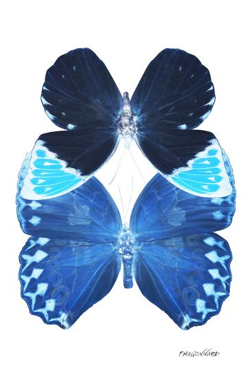 Miss Butterfly Duo Heboformo II - X-Ray White Edition-Philippe Hugonnard-Photographic Print