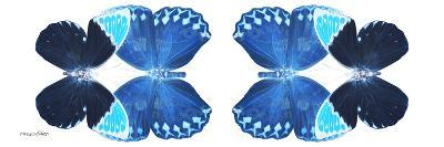 Miss Butterfly Duo Heboformo Pan - X-Ray White Edition II-Philippe Hugonnard-Photographic Print
