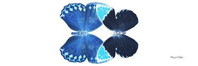 Miss Butterfly Duo Heboformo Pan - X-Ray White Edition-Philippe Hugonnard-Photographic Print
