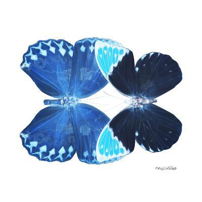 Miss Butterfly Duo Heboformo Sq - X-Ray White Edition-Philippe Hugonnard-Photographic Print