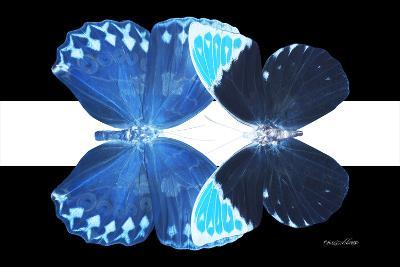 Miss Butterfly Duo Heboformo - X-Ray B&W Edition II-Philippe Hugonnard-Photographic Print