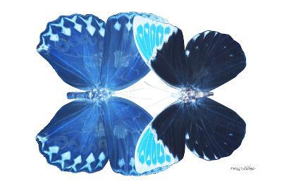 Miss Butterfly Duo Heboformo - X-Ray White Edition-Philippe Hugonnard-Photographic Print