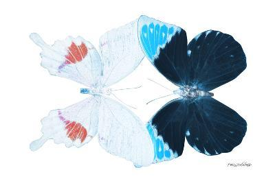 Miss Butterfly Duo Hermosana - X-Ray White Edition-Philippe Hugonnard-Photographic Print