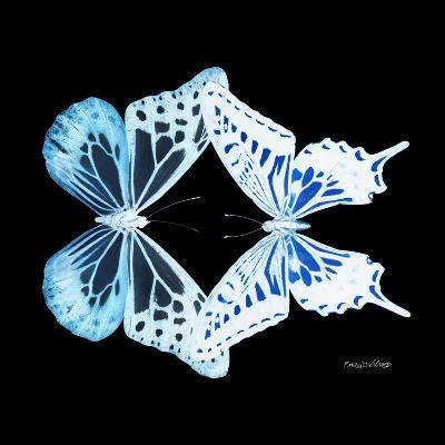 Miss Butterfly Duo Melaxhus Sq - X-Ray Black Edition-Philippe Hugonnard-Photographic Print