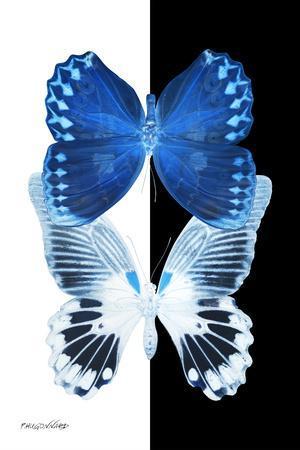 Miss Butterfly Duo Memhowqua II - X-Ray B&W Edition-Philippe Hugonnard-Photographic Print