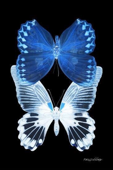 Miss Butterfly Duo Memhowqua II - X-Ray Black Edition-Philippe Hugonnard-Photographic Print