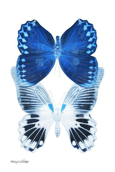 Miss Butterfly Duo Memhowqua II - X-Ray White Edition-Philippe Hugonnard-Photographic Print