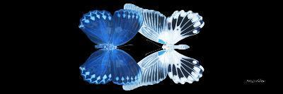 Miss Butterfly Duo Memhowqua Pan - X-Ray Black Edition II-Philippe Hugonnard-Photographic Print