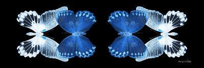 Miss Butterfly Duo Memhowqua Pan - X-Ray Black Edition-Philippe Hugonnard-Photographic Print