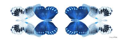 Miss Butterfly Duo Memhowqua Pan - X-Ray White Edition-Philippe Hugonnard-Photographic Print