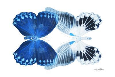Miss Butterfly Duo Memhowqua - X-Ray White Edition-Philippe Hugonnard-Photographic Print