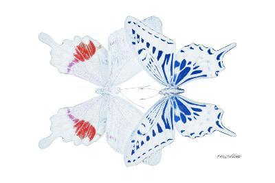 Miss Butterfly Duo Parisuthus - X-Ray White Edition-Philippe Hugonnard-Photographic Print