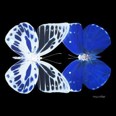 Miss Butterfly Duo Priopomia Sq - X-Ray Black Edition-Philippe Hugonnard-Photographic Print