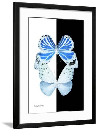 Miss Butterfly Duo Salateuploea II - X-Ray B&W Edition-Philippe Hugonnard-Framed Photographic Print