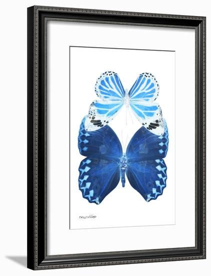 Miss Butterfly Duo Stichatura II - X-Ray White Edition-Philippe Hugonnard-Framed Photographic Print