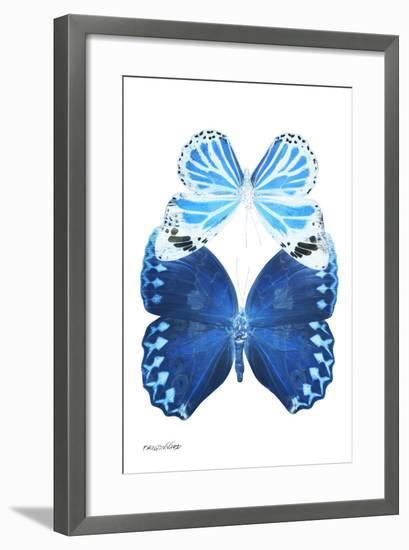 Miss Butterfly Duo Stichatura II - X-Ray White Edition-Philippe Hugonnard-Framed Premium Photographic Print