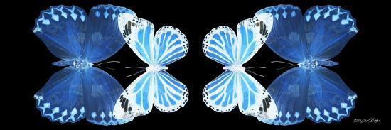 Miss Butterfly Duo Stichatura Pan - X-Ray Black Edition II-Philippe Hugonnard-Photographic Print