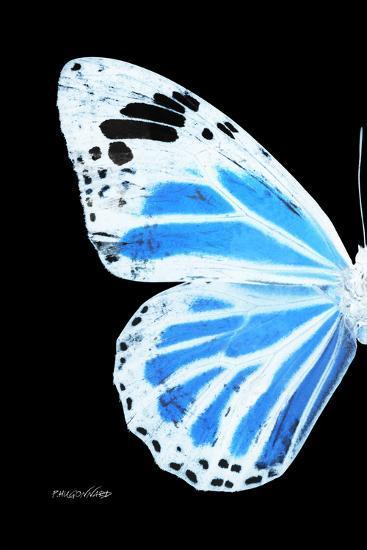 Miss Butterfly Genutia - X-Ray Left Black Edition-Philippe Hugonnard-Photographic Print