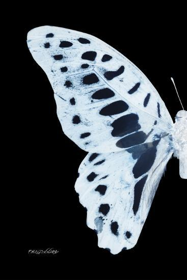 Miss Butterfly Graphium - X-Ray Left Black Edition-Philippe Hugonnard-Photographic Print