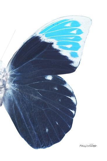 Miss Butterfly Hebomoia - X-Ray Right White Edition-Philippe Hugonnard-Photographic Print