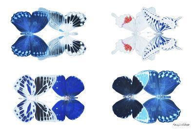 Miss Butterfly X-Ray Duo White III-Philippe Hugonnard-Photographic Print