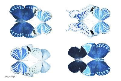Miss Butterfly X-Ray Duo White IV-Philippe Hugonnard-Photographic Print