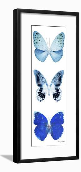 Miss Butterfly X-Ray White Pano II-Philippe Hugonnard-Framed Photographic Print