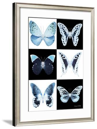 Miss Butterfly X-Ray-Philippe Hugonnard-Framed Photographic Print
