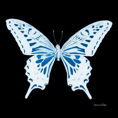 https://imgc.artprintimages.com/img/print/miss-butterfly-xuthus-sq-x-ray-black-edition_u-l-q19nbjj0.jpg?p=0