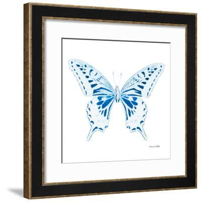Miss Butterfly Xuthus Sq - X Ray White Edition-Philippe Hugonnard-Framed Photographic Print
