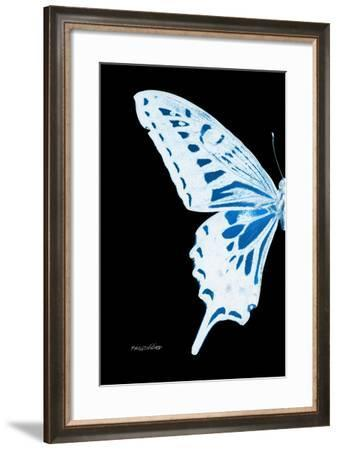 Miss Butterfly Xuthus - X Ray Left Black Edition-Philippe Hugonnard-Framed Photographic Print