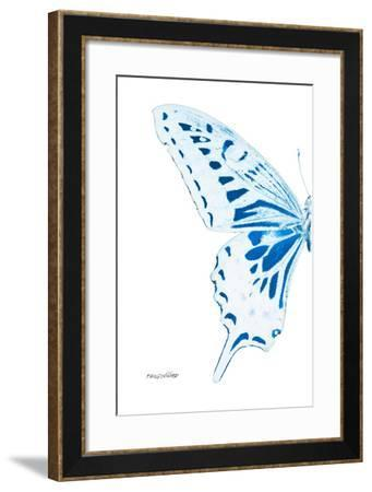 Miss Butterfly Xuthus - X Ray Left White Edition-Philippe Hugonnard-Framed Photographic Print