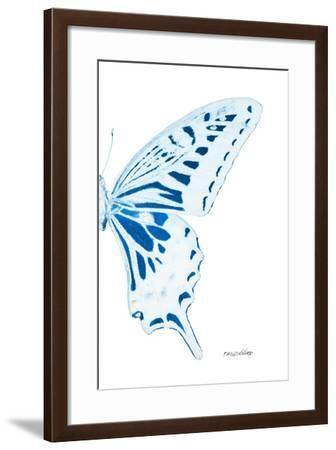 Miss Butterfly Xuthus - X Ray Right White Edition-Philippe Hugonnard-Framed Photographic Print