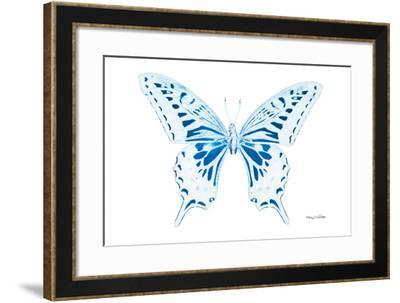 Miss Butterfly Xuthus - X Ray White Edition-Philippe Hugonnard-Framed Photographic Print