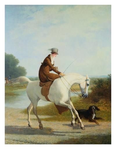 Miss Cazenove on a Gray Hunter-Jacques Laurent Agasse-Giclee Print